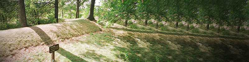 Lizard Mound County Park